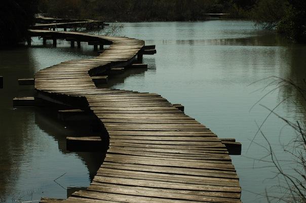 A Ponte para o Sempre
